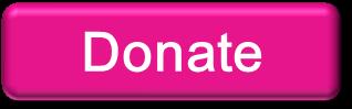 2013 Donate