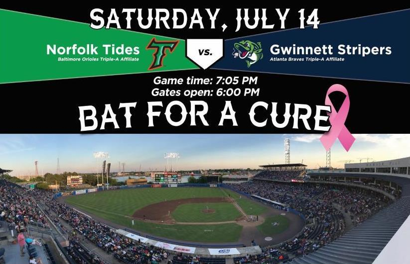 2018 Bat for a Cure