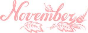 November17